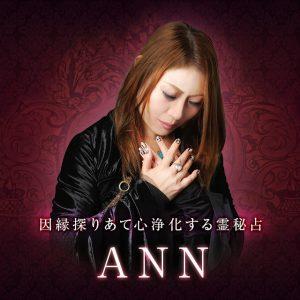ANN先生